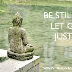 Online Meditation Teaching, Mindfulness Session and Relaxation Exercises